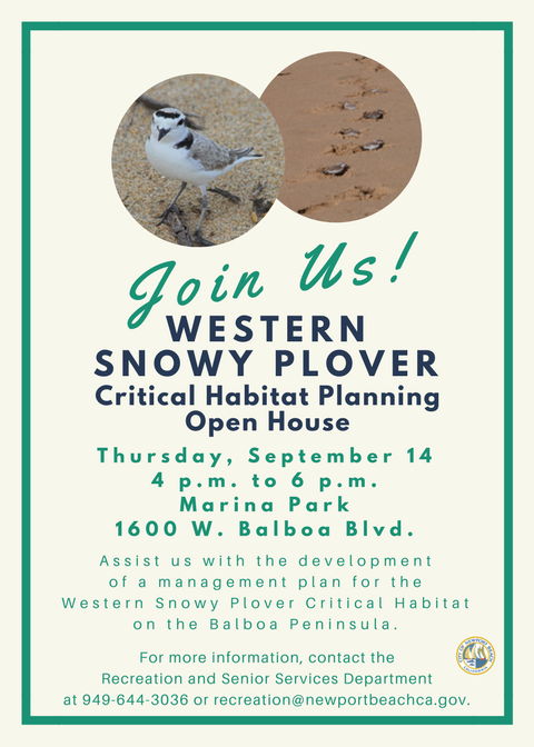 Western Snowy Plover Open House-Invitation 5x7