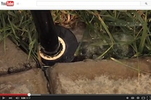 Irrigation Tip Video Still